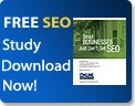 search engine optimization study on how small businesses use seo